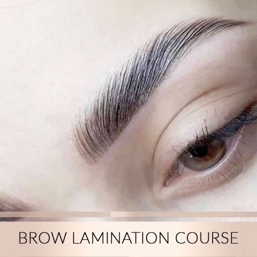 Brow-Lamination-Course
